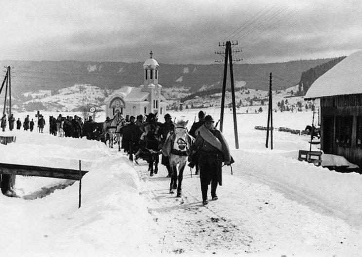 Niepodległe Państwo Chorwackie początkowo nie miało typowych sił zbrojnych. Powołano do życia jedynie Siły Samoobrony, które do końca 1941 r. uzyskały stan 85 000 ludzi.
