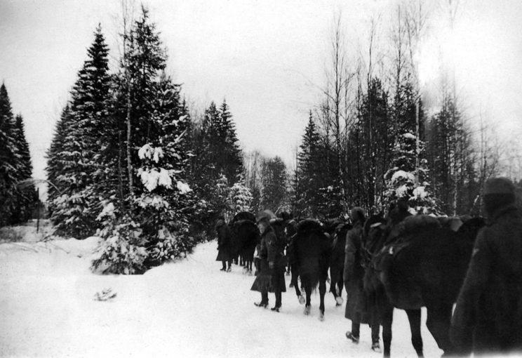 Wprowadzenie w styczniu 1942 r. wojsk bułgarskich do służby okupacyjnej w Serbii pozwoliło Niemcom na wysłanie wojsk do Bośni na teren Niepodległego Państwa Chorwackiego...