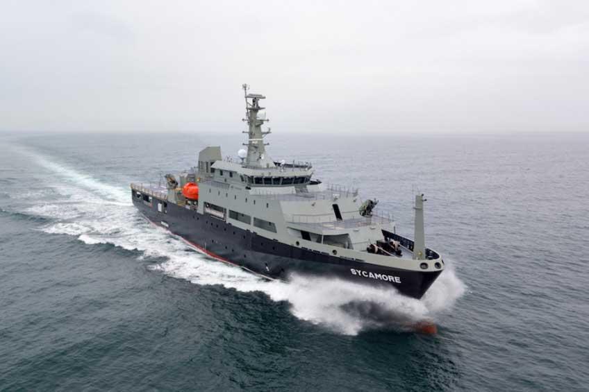Okręt MV Sycamore