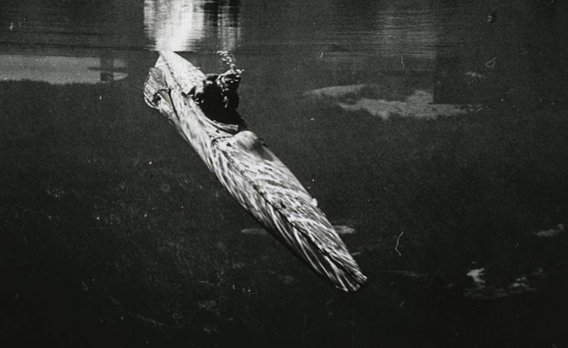 """Motorised Submersible Canoe, czyli """"spiaca slicznotka"""" zanurza sie do akcji. Fot. Western Australian Museum"""