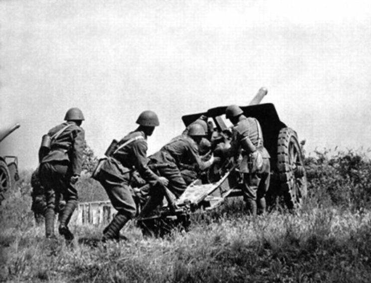 """8cm lehký kanon vzor 30 , po polsku """"76,5 mm armata wz. 30 systemu Škoda"""", miała być działem uniwersalnym, zdolnym również prowadzić ogień przeciwlotniczy. Była to jednak tylko możliwość teoretyczna."""