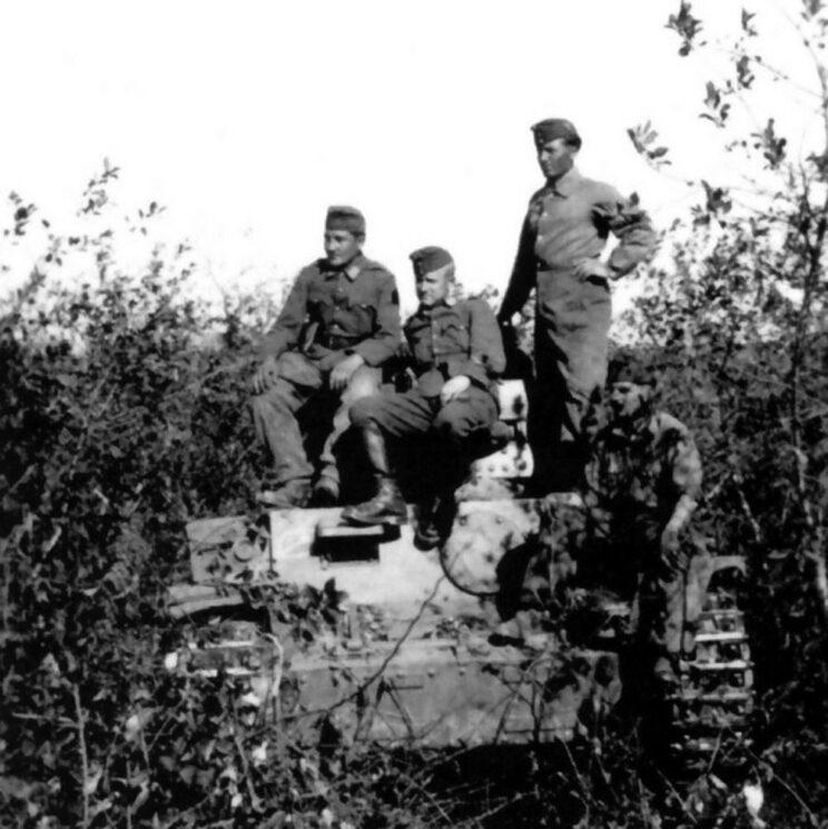 Zamaskowane pozycje węgierskich czołgów; Krotojak, sierpień 1942 r.