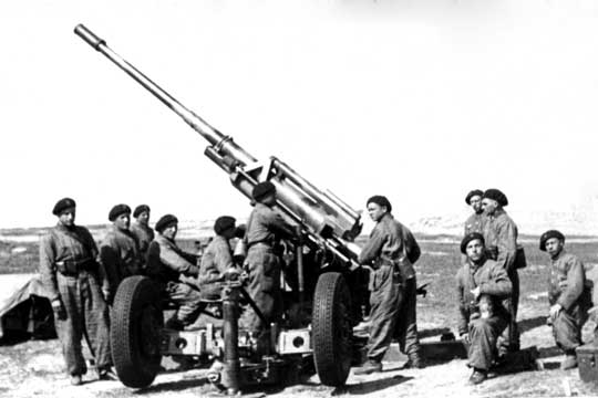 Podstawowym celem utworzenia dywizjonu kadrowego, bez względu na wybór typu armat przeciwlotniczych, było przeszkolenie obsług, dowódców oraz opracowanie regulaminów.