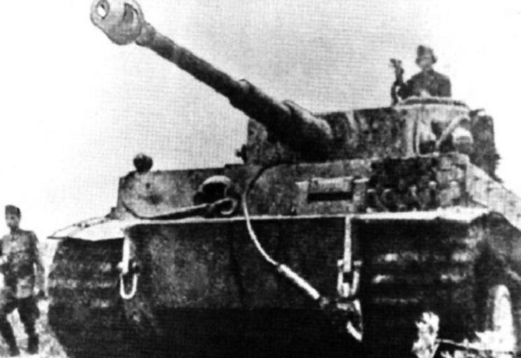 Wczesna wersja Tygrysa, front wschodni, czerwiec-lipiec 1944 r.