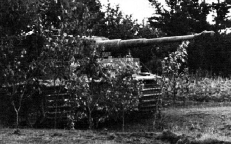 Zamaskowany Tygrys, lato 1944 r. Każdy czołg tego typu był dla Węgrów na wagę złota.